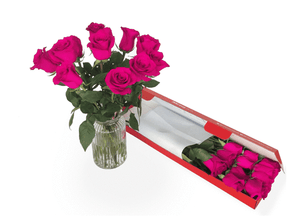 12 Bright Pink Letterbox Roses - Roses Only