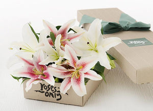 10 Mixed Lilies Gift Box - Roses Only