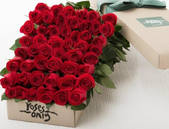 36 ROSES + 18 FREE STEMS