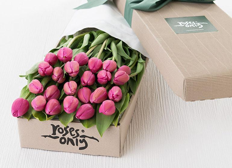 24 French Tulips Gift Box - Roses Only