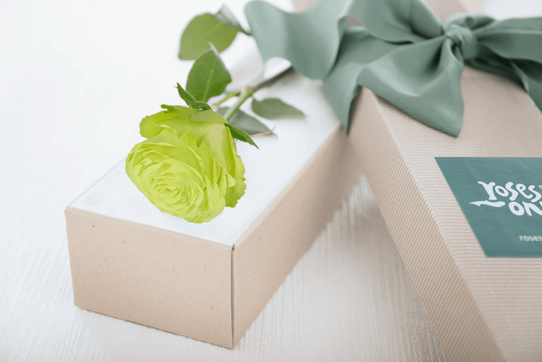 Single Wasabi Rose Gift Box