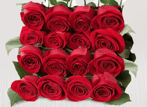 Eighteen extra red stems - Roses Only