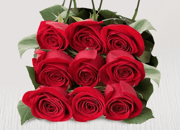 Nine extra red stems - Roses Only