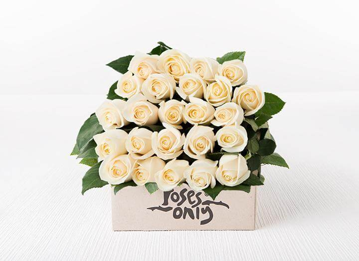 White Cream Roses Gift Box 24
