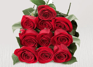 Ten extra red stems - Roses Only