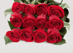 Twelve extra red stems - Roses Only