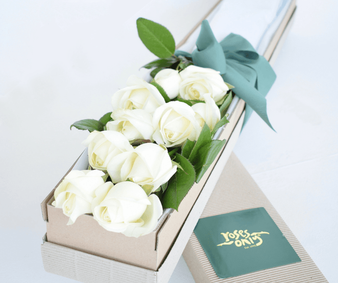 White Cream Short Roses Signature Box - Roses Only