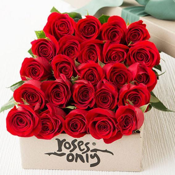 Roses Only Signature Boxed Long Roses