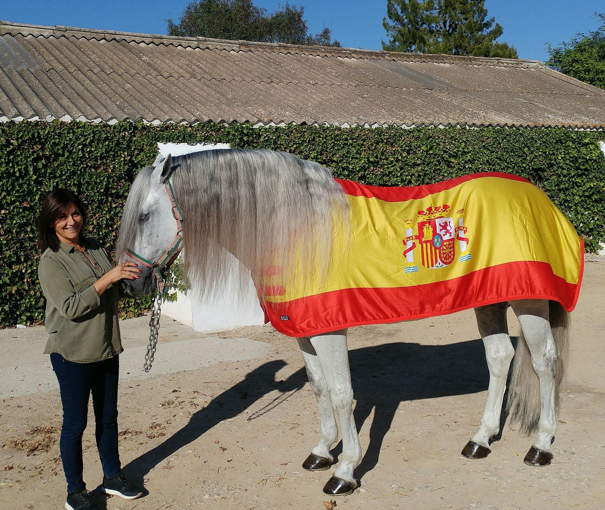 Alcantara Equestre Isabelle Fox Andalusia Guide