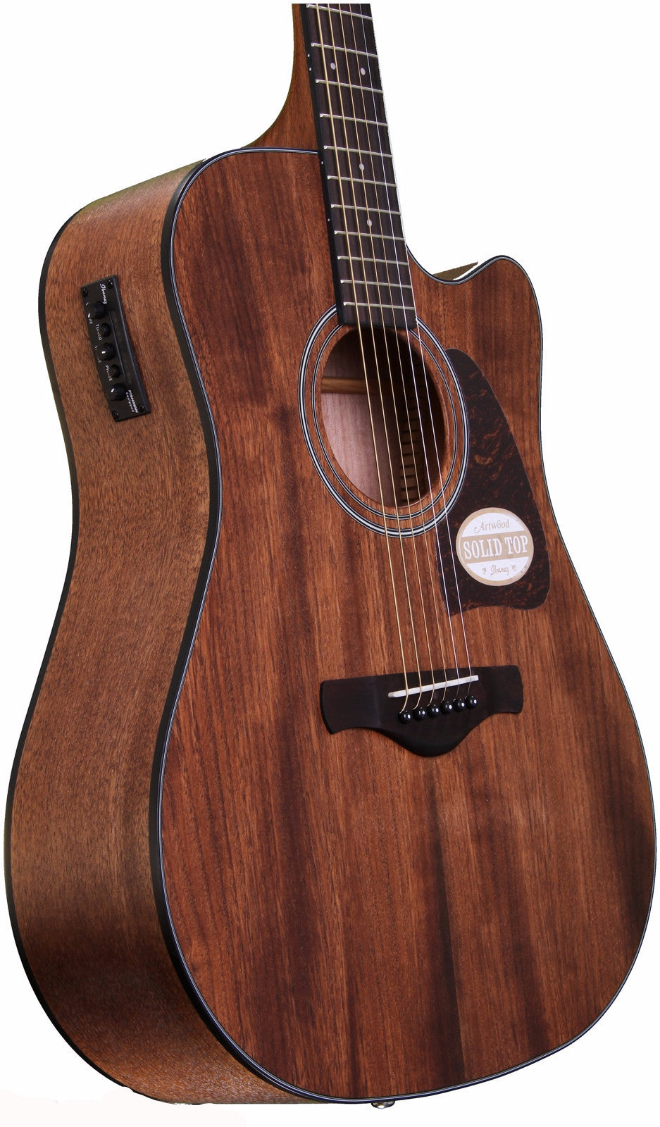 IBANEZ AW54CE ACOUSTIC GUITAR