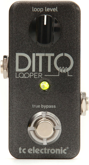 TC ELECTRONIC DITTO LOOPER GUITAR | Zoso Music