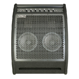 SOUNDKING DRUM MONITOR 200-WATT 12-INCH DS200 | Zoso Music