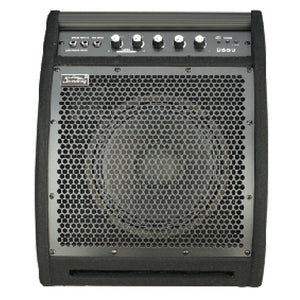 SOUNDKING DRUM MONITOR 50-WATT DS50 | Zoso Music