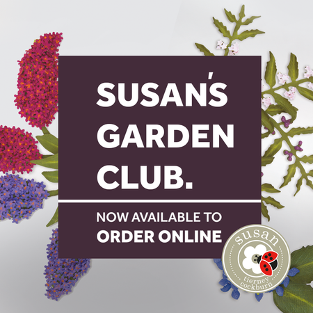 Susan's Garden Club Inspiration
