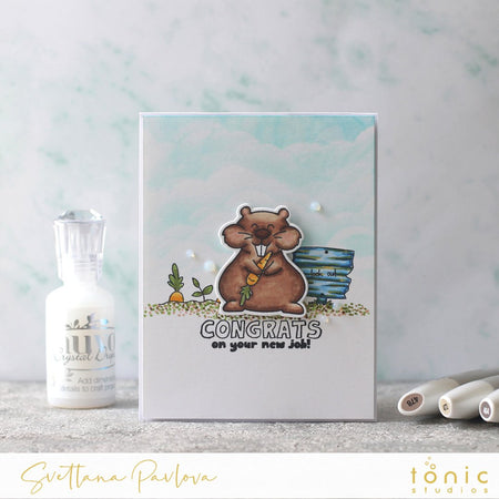 How to Make a Congratulations Card with Go For It! Gopher Adorables Stamp Set