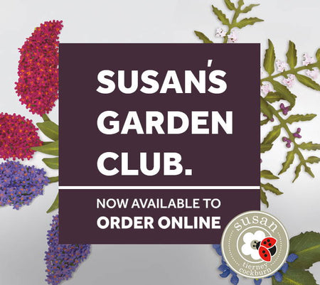 Susan's Garden Club - Inspiration