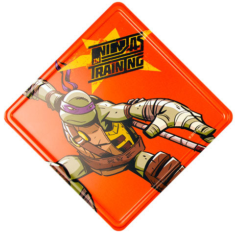 Ninjas In Training (Teenage Mutant Ninja Turtles) Metal Door Sign