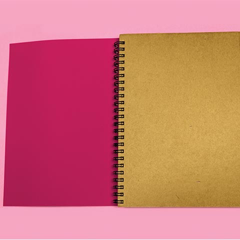 Fuschia Brilliant Ideas Diary