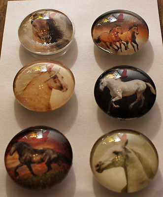 Horse Lovers Glass Gem Magnets