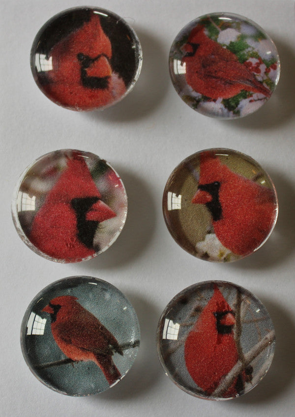 Cardinal Lovers Glass Gem Super Strong Magnets
