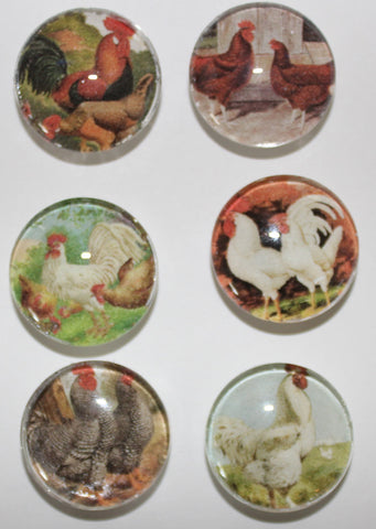 Roosters Glass Gem Super Strong Magnets