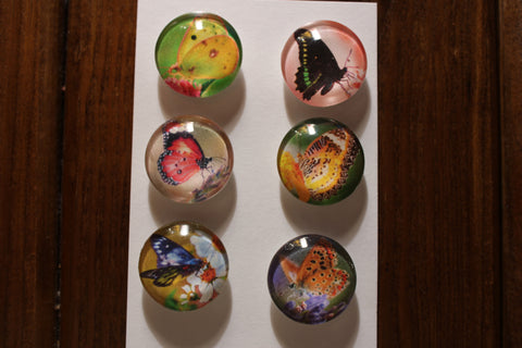 Beautiful Bright Butterflies Glass Gem Super Strong Magnets