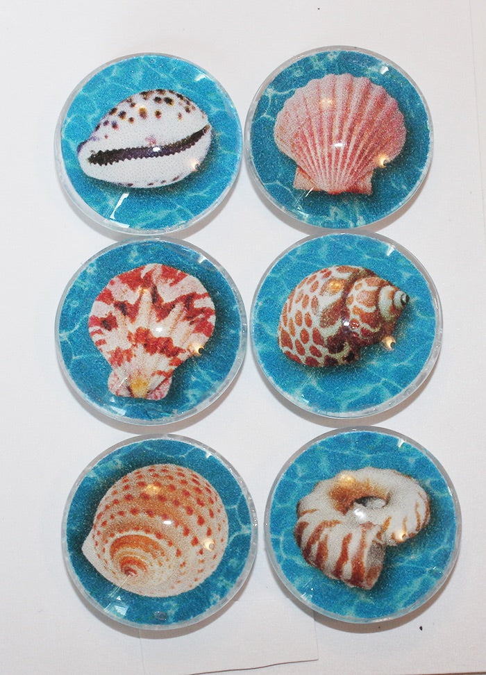 Seashells Glass Gem Super Strong Magnets