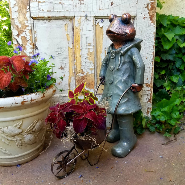 Decorative Garden Frogs...Just Too Irresistible in this Week's Find of the Week