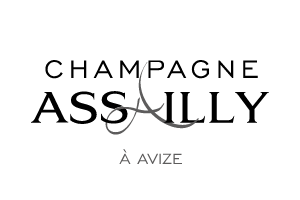 Assailly