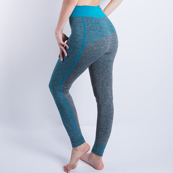 Fantom Fitness Legging (85% OFF)