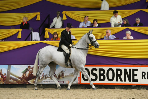 Robert Oliver and Show Hunter, Masterful. Pic by HOYS.