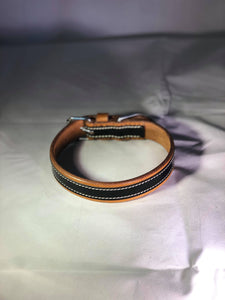 Tan and Gloss Dog Collar - equicraftltd