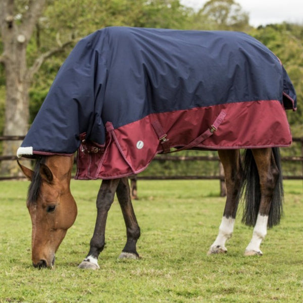 JHL HORSE TURNOUT RUG, MEDIUM-WEIGHT COMBO: NAVY/BURGUNDY - equicraftltd
