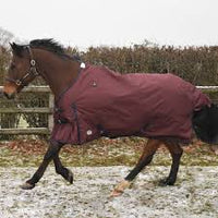 JHL ESSENTIAL HORSE TURNOUT RUG, MEDIUM-WEIGHT - BURGUNDY/NAVY - equicraftltd