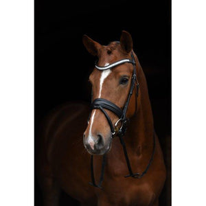 SD Crown Treasure Bridle