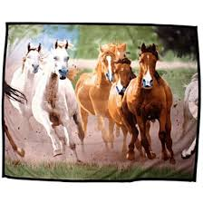 HKM Fleece Blanket with Horses