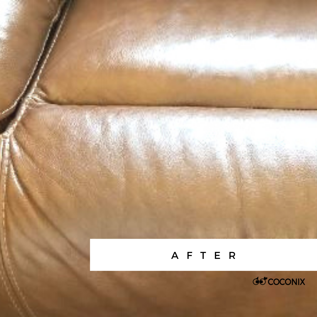 Leather Sofa After Coconix Repair