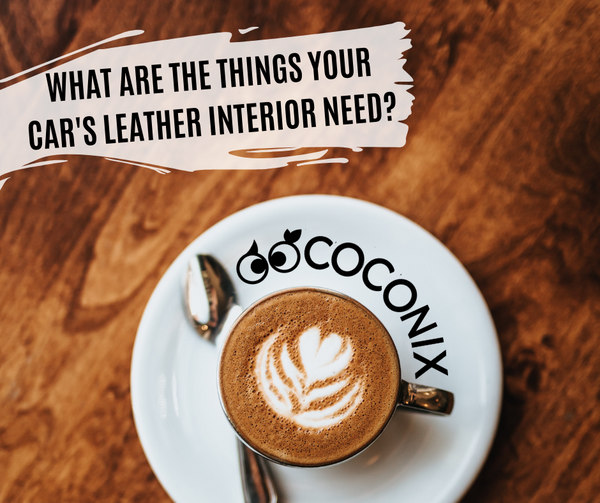 WHAT ARE THE THINGS YOUR CAR'S LEATHER INTERIOR NEED?