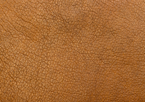 Leather and Vinyl Repairs