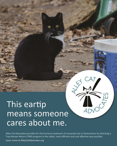 "Alley Cat Advocates 16""x20"" Poster: This eartip means someone cares about me."