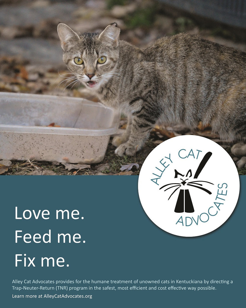"Alley Cat Advocates 16""x20"" Poster: Love me.  Feed me.  Fix me."