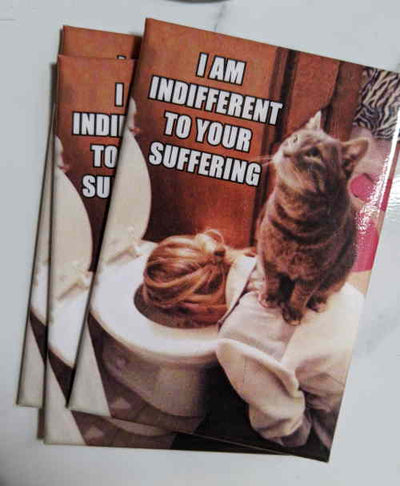 I Am Indifferent Magnet