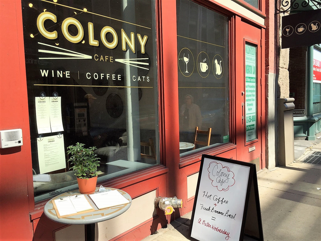 Colony Storefront 1125 Penn Ave Strip District