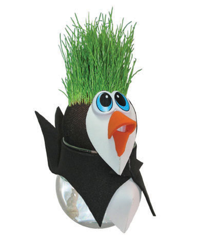 Grow Your Own Penguin Grass Head