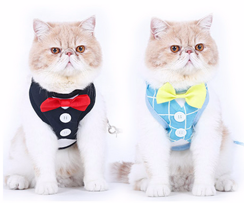 Cats Tuxedo Harness With Leash