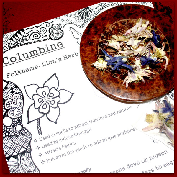 Columbine Flowers Dried - Heather's Mystical Haven - 1