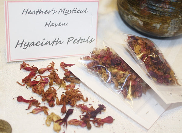 Dried Hyacinth Petals - Heather's Mystical Haven - 5