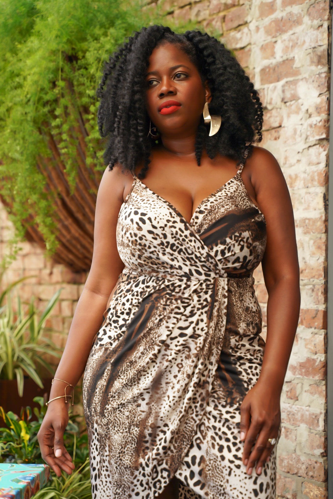Curvy Leopard Wrap Dress