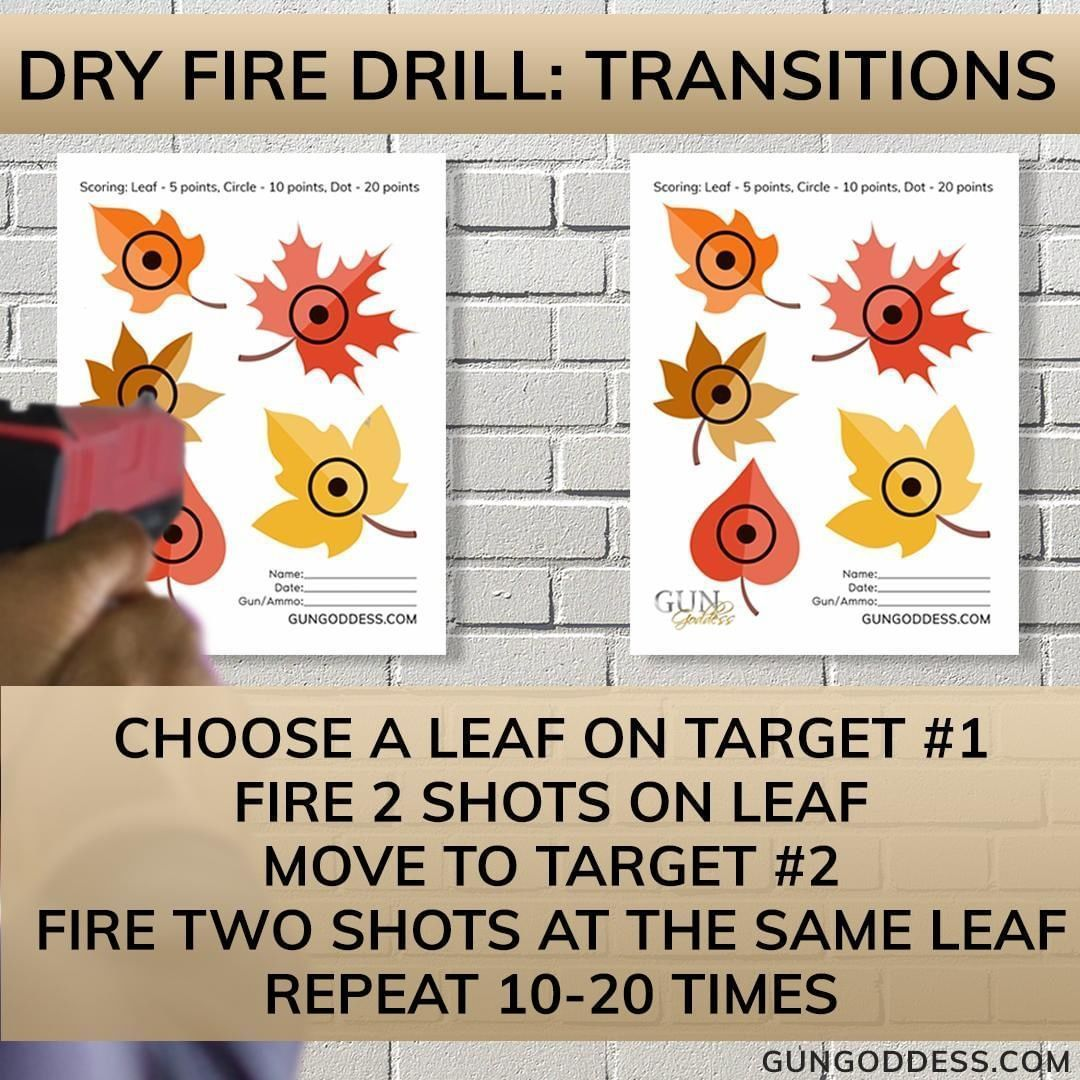 Dry or Live-fire Drill: Transitions