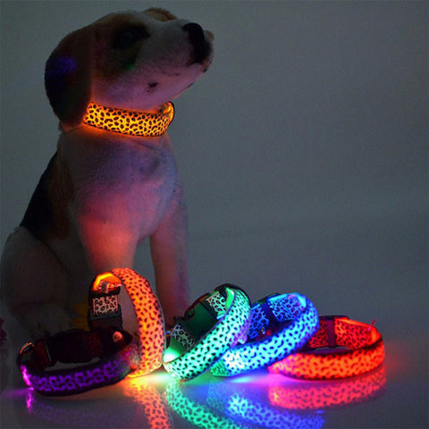 FREE! LED Dog Collar Giveaway